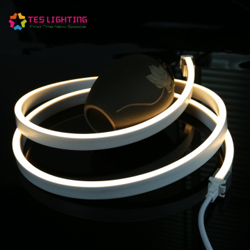 Custom 24V 5050 PVC Flex Light Strip Neon