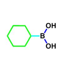 Cyclohexylboronic acid CAS 4441-56-9