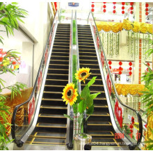 2015 New Product Outdoor Long Escalator