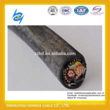 1100V XLPE ou cabo de cobre concêntrico isolado PVC de 2x6mm2 NYCY