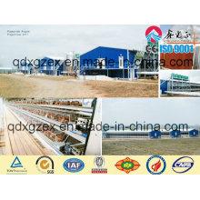 Casa de pollo de estructura de acero profesional (CH-16134)