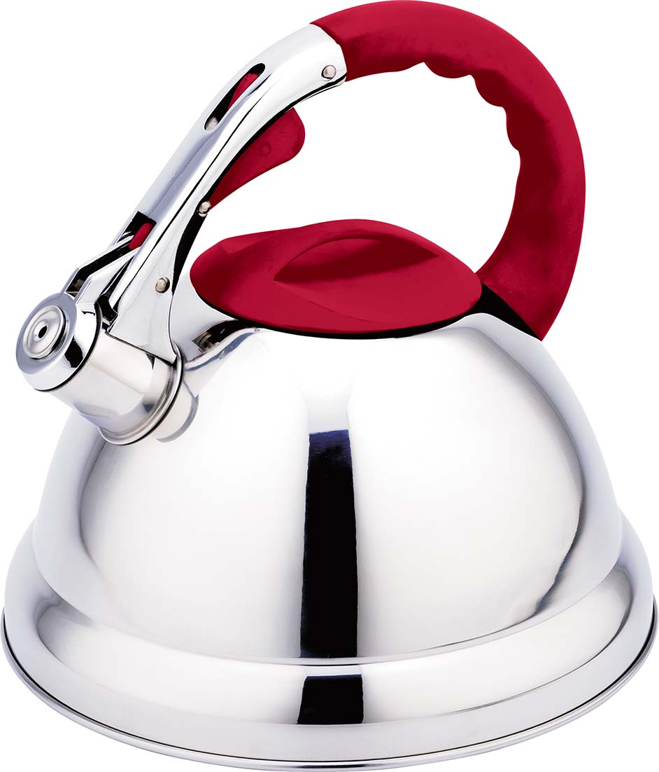 stainless steel kettle with red handle