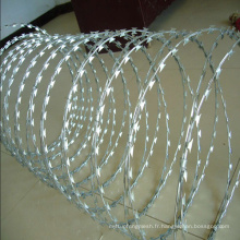 Fil à barbelé galvanisé de haute qualité pour clôture