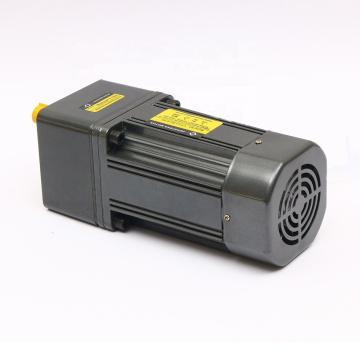 OEM Induktion 60W 220V AC Elektromotor