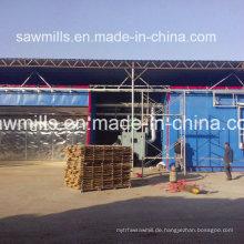 Trocknende Trockner trocknen Ausrüstung Holz Trockenkammer für Verkauf