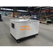 30kw / 35kw Ng / LPG / Бензиновый бензиновый резервный генератор навеса