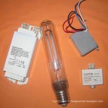 Système de lampe à sodium modifiable à puissance variable Type d'économie d'énergie (ML-209)