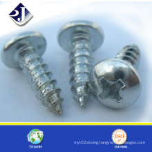 Made in China Tapping Screw