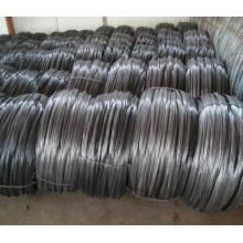 Alambre negro para la fabricación de clavo / alambre de clavo de acero de bajo carbono