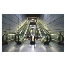 Factory Price Auto Stop and Start Outdoor Escalator with Vvvf