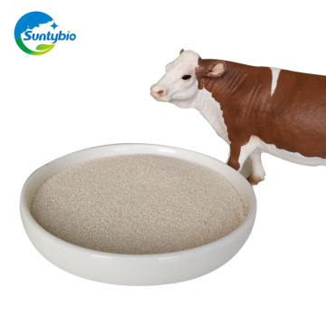 China manufacturer supply dry yeast for animal feed yeast price per ton