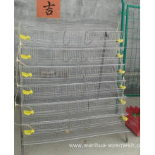 Galvanized layer cages for poultry farms
