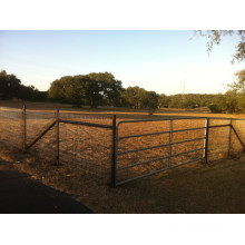 Cerca de campo de agricultura de gado