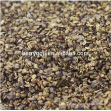 Raw Wild Black Goji seeds pour la plantation Organic Goji Berry seeds