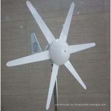 100W DC12V / 24V turbina de viento horizontal, generador de viento Precio para el hogar