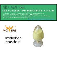 Hohe Qualität Steriods: Trenbolon Enanthate für Bodybuilding