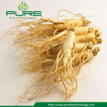 Raw crude herbs medicine natural ginseng