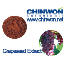 Polyphenols 95% Grape Seed Extract
