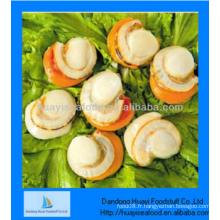 Viande à pétoncles savoureuse fraîche fraîche et fraîche au meilleur prix