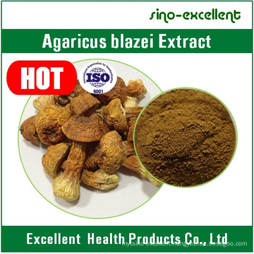 Agaricus Blazei Murill Mushroom