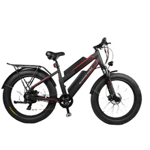 factory directly sale ebike 24/26 inch fat tire electric bike 750W