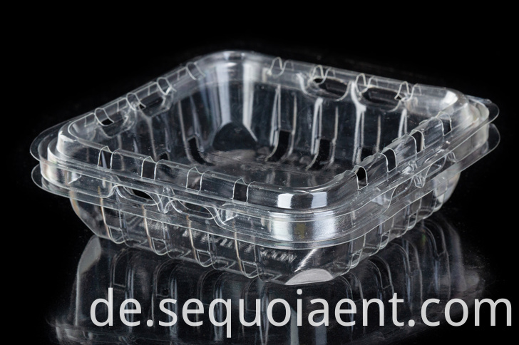 Transparent Plastic Fruit Packaging