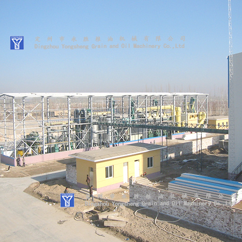 300T CottonSeed Oil Press Plant Project