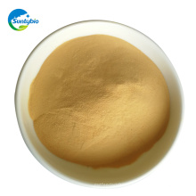 Animal Feed Additive Yeast Manufacturer Yeast Extract From Alibaba