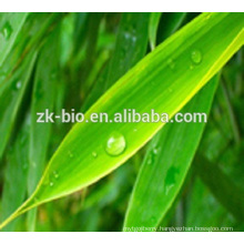 High quality factory price bamboo leaf extract
