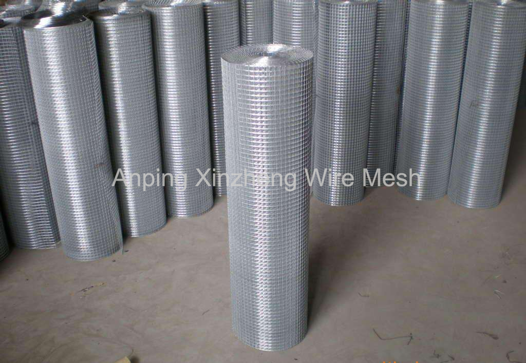 Galvanized Welded Mesh Roll