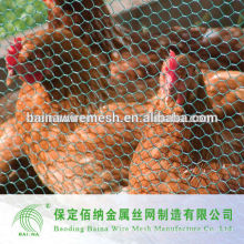 Hexagonal Geflügel Zaun Huhn Wire Netting