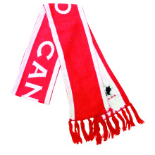 wholesale customized logo polyester printing  football acrylic knitted fans scarf sport team  decorative scarf