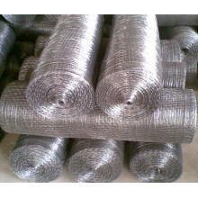 Hot Dipped Galvanized Square Wire Mesh Manufacturer