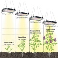 What grow lights do i need for vegetables