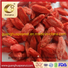 Best Quality Ningxia Organnic Lower Pesticide Good Fragrance Dried Goji Berry
