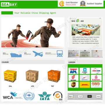 Servicio barato expreso / del mensajero de China (DHL, TNT, UPS)