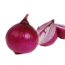 High Quality Wholesale Custom Cheap fresh dried onions for sale