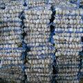 Alta qualidade de alho branco fresco chinês em pequeno pacote