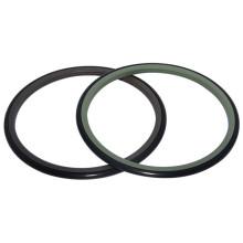 Application in Rotary Distributors and Pivoting Motors Piston Rotary Sealing