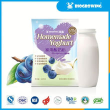 Heidelbeere Geschmack Lactobacillus lecker gefroren Joghurt