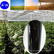 Plant Source Compound Amino Acid Liquid Free From Chloridion