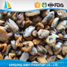 high quality blue mussels