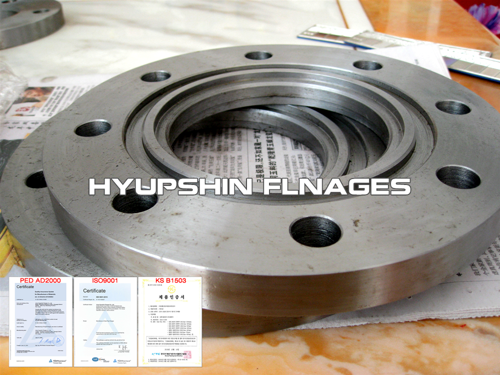 Hyupshin Flanges Ring Type Joint Flanges Rtj