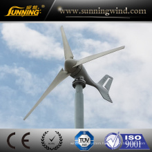 Factory Supply Dinamo Eolico Wind Turbine 300W