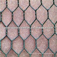 Chicken Wire fence