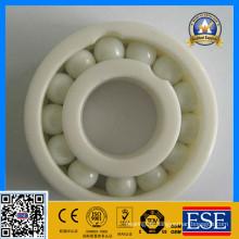 Ceramic Deep Groove Ball Bearing 6005 25X47X12 mm