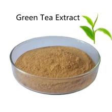 Compre ingredientes ativos online em pó de extrato de chá verde