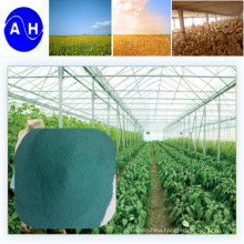 Copper Amino Acid Chelate Fertilizer Vegetable Source Amino Acid Chelate