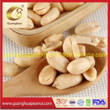 Roasted Peanut Kernels Salted by Oil