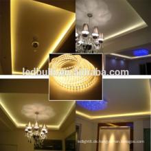 RGB dekorative LED-Streifen neu Fabrik Soem Willkommen geführtes Streifenlicht